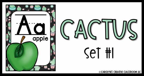 CACTUS1 (1)
