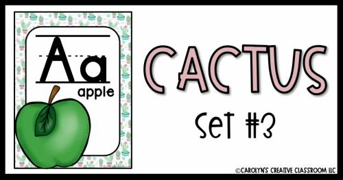 CACTUS3 (1)